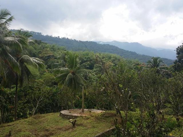Development Land Archive In Hope Bay Portland Jamaica